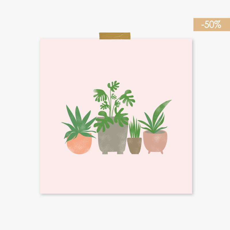 ROŚLINY - 50%